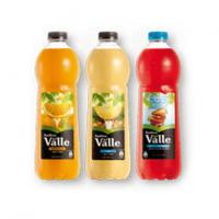 Jugo Néctar Andina del Valle - Botella 1 Litro